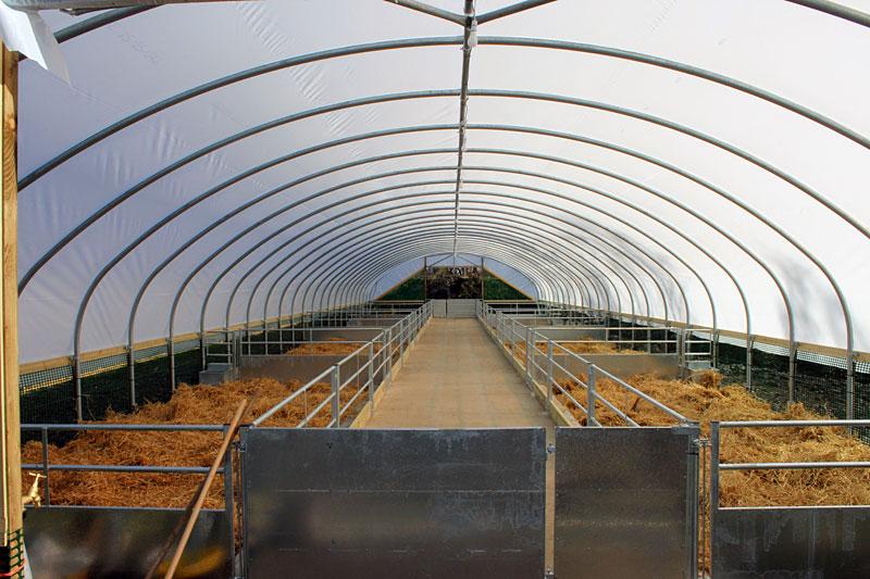 Polytunnel installation, Invermilton Farm